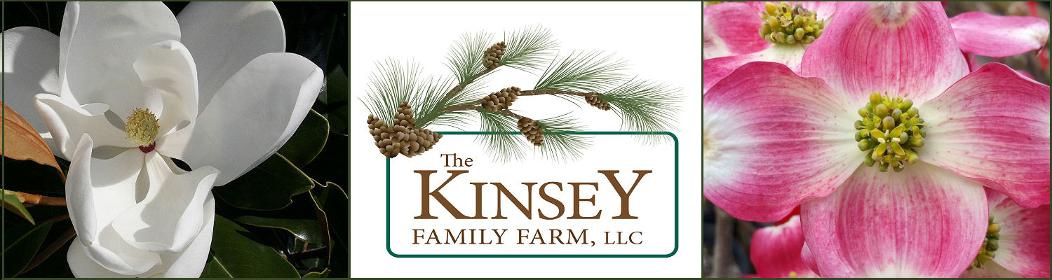 Plant Nursery Garden Center Kinsey Family Farm